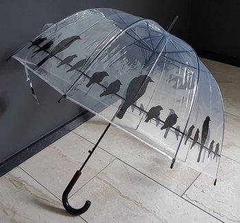 paraplu transparant vogels