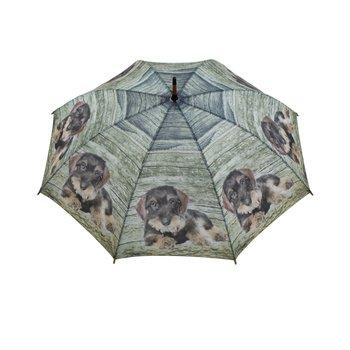 paraplu teckel