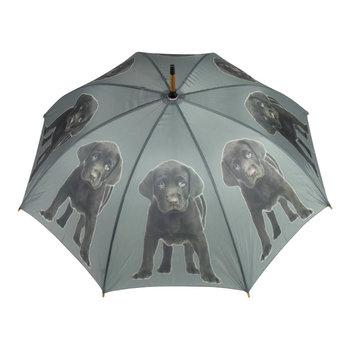 paraplu labrador
